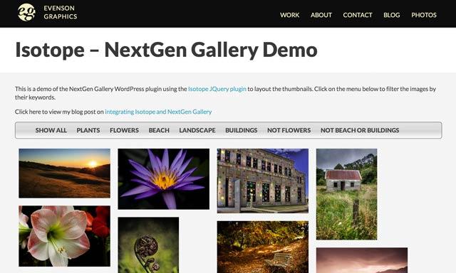 Как создать портфолио в WordPress - плагин NExtGen